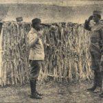 Momcilo Gavric – najmladji podnarednik u istoriji ratova