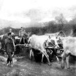 PRIČA O LEGENDI: Slika koja je pre 100 godina Srbe predstavila svetu
