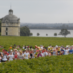 Drugi Vinski maraton 22. septembra na Paliću