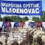 """Danas: Kažnjeni zbog slike ovaca na Fejsbuk stranici """"Alo, Mladenovac"""""""