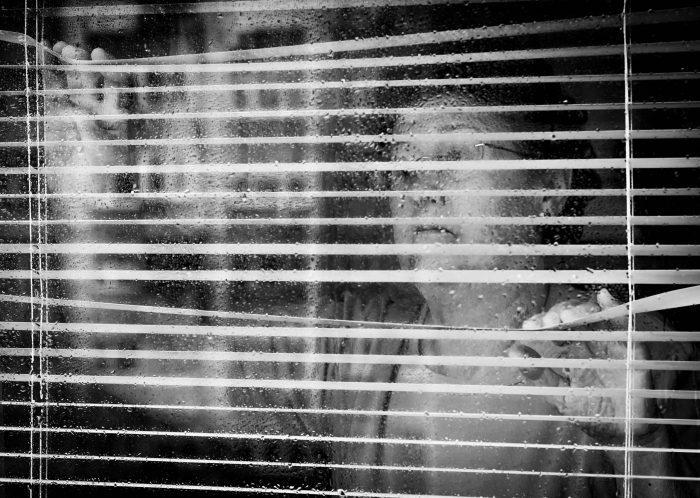 mediasfera-psiholoski-portet-krize-foto-Ana-Batricevic2