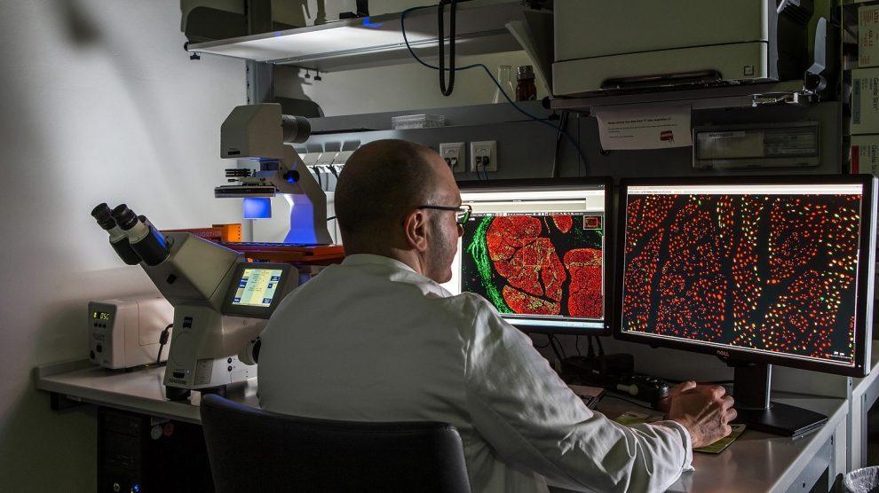 mediasfera-korona-virus-istrazivanja-2.jpg