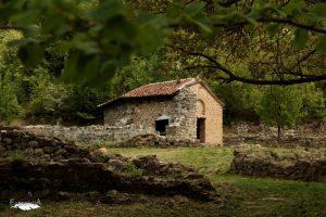 mediasfera-Namasija-foto-Suzana-Bogdanovic3.jpg