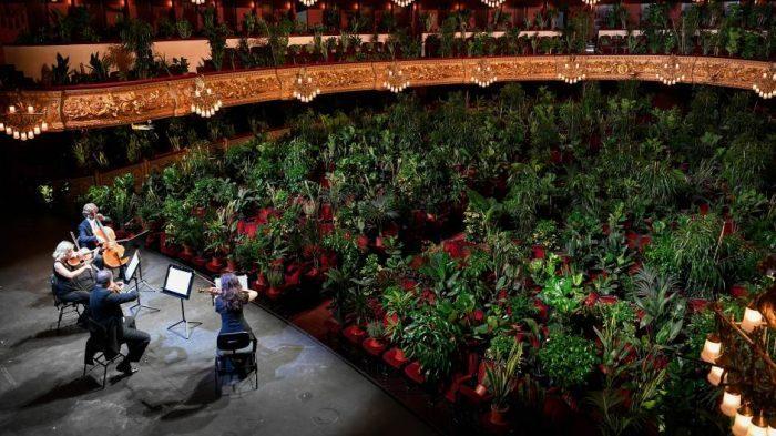 barcelona-opera-biljke.2jpg