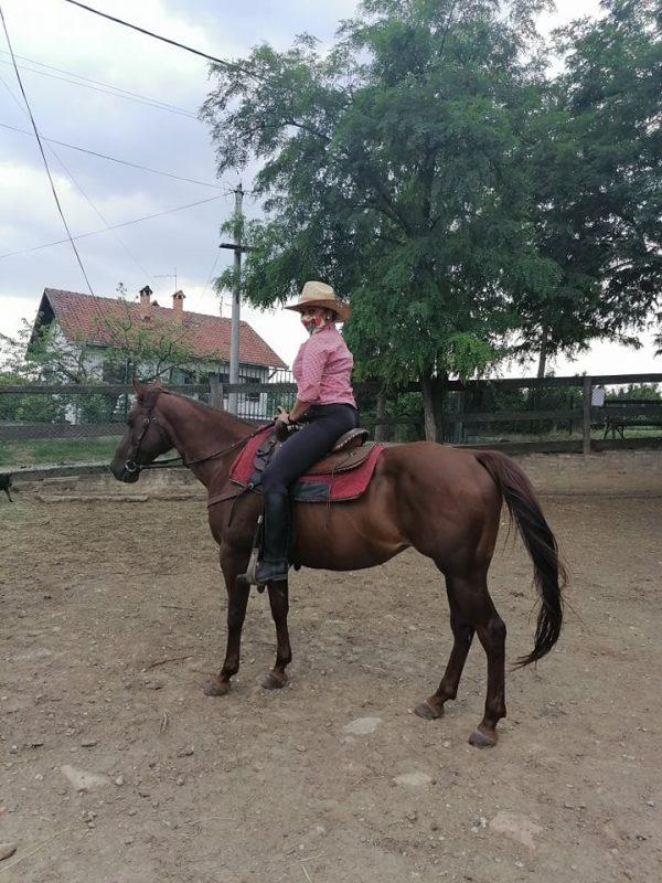 Grocka-Urban-cowboy-Smiljana-Popov4jpg