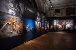 Izložba fotografija Majkla Nikolsa u Beču1jpg