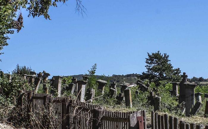 Boracko-groblje-Foto-Aleksandar-Jocic-min.jpg