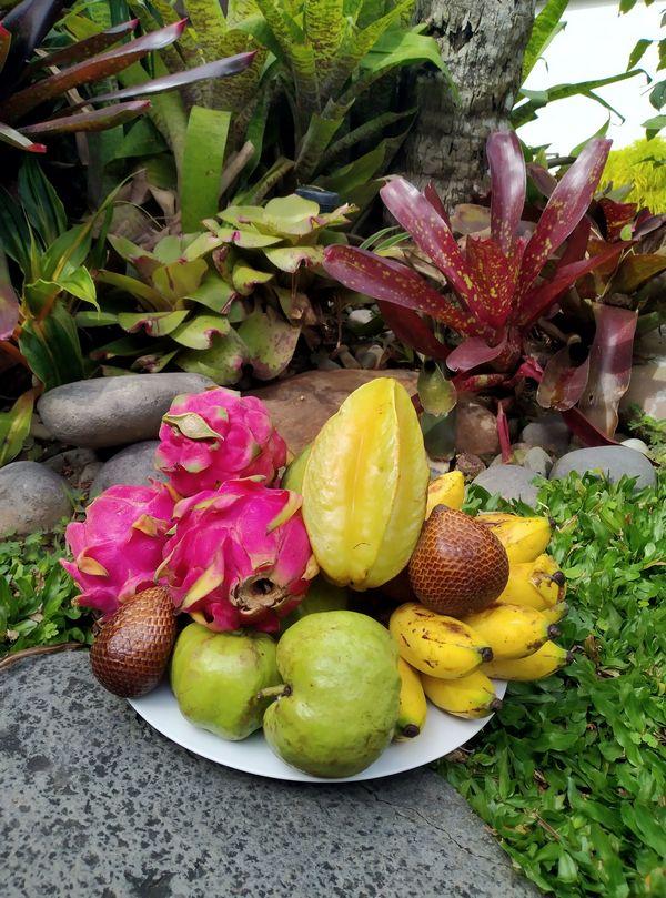 Bali-voce.jpg