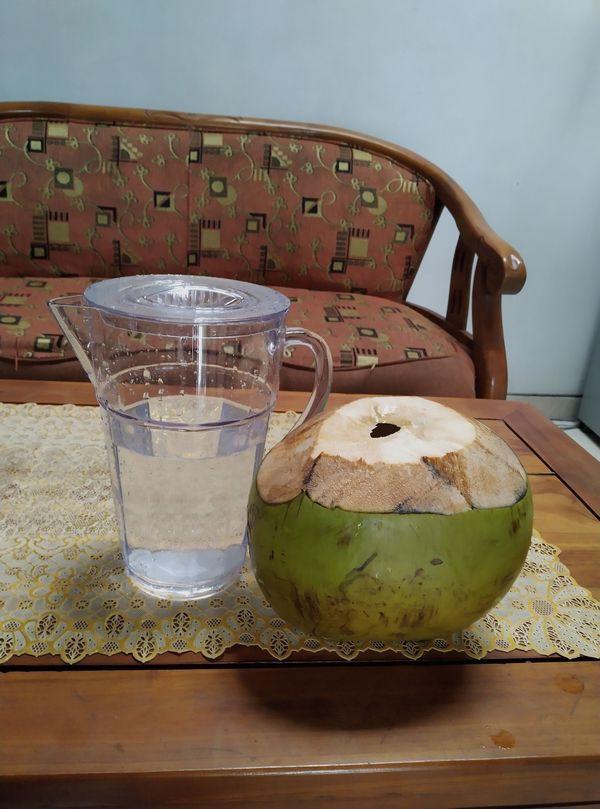 Bali-voce-kokos.jpg