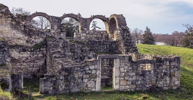 Ostacu-Mitropolitskog-dvora-5-Foto-Aleksandar-Jocic-min.jpg