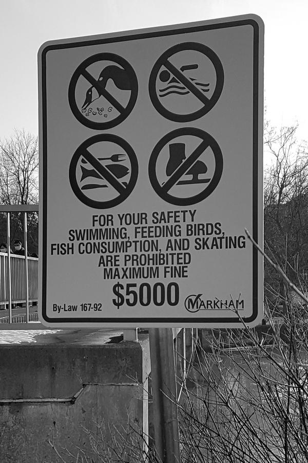 Zabranjene-aktivnosti-za-koje-je-predvidjena-kazna-i-do-5.000-dolara-5-Foto-Budislav-Bulatovic.jpg