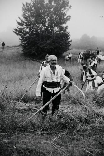 Kosidba-na-Rajcu-foto-Sara-Radivojevic-5