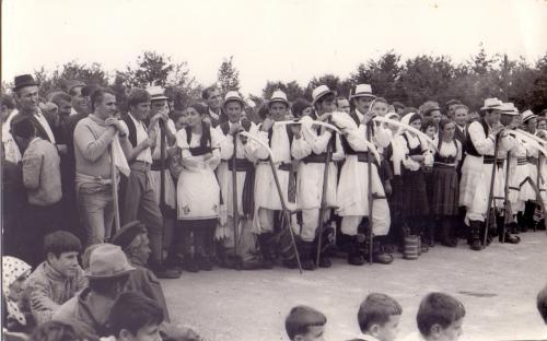 Prva-kosidba-1970-godine-foto-porodice-Mijailovic-iz-Ljiga-2